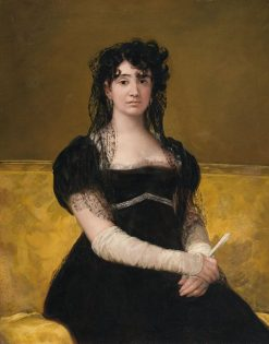 Portrait of Doña Antonia Zarate | Francisco de Goya y Lucientes | Oil Painting