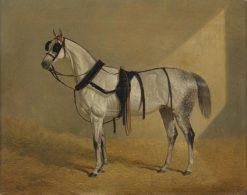 White Horse | John Frederick Herring