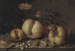 Still Life with Fruit and Shells | Balthasar van der Ast | Oil Painting