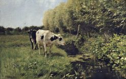 Cows at Pasture | Anton Mauve | Oil Painting