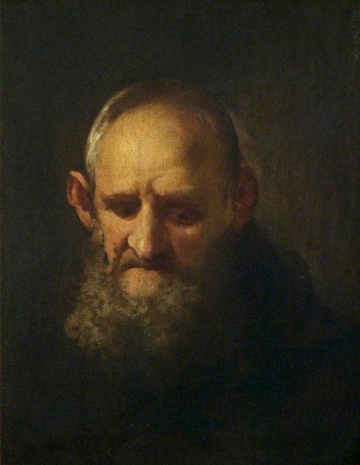 Head of a Capuchin | Richard Wilson