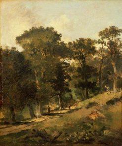 Postwick Grove