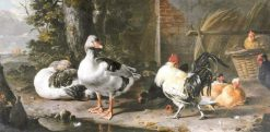 Fowl and Geese | Melchior d'Hondecoeter | Oil Painting