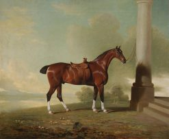 Favorite Chestnut Hunter of Lady Frances Pierrepont | Benjamin Marshall | Oil Painting