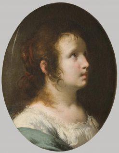 Female Saint | Bernardo Strozzi | Oil Painting