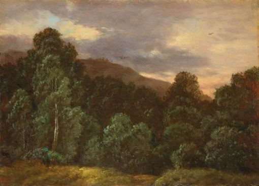 Wooded Landscape under a Cloudy Sky   Carl Gustav Carus   Oil Painting