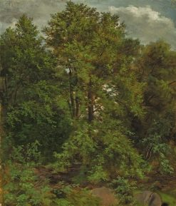 Woodland Scene | Carl Gustav Carus | Oil Painting