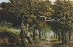 A Woodland Path | Charles Leaver | Oil Painting