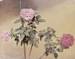 Study of Roses(also known as Rose Branches) | Conrad Wise Chapman | Oil Painting