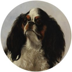 Head of a King Charles Spaniel | George Earle | Oil Painting