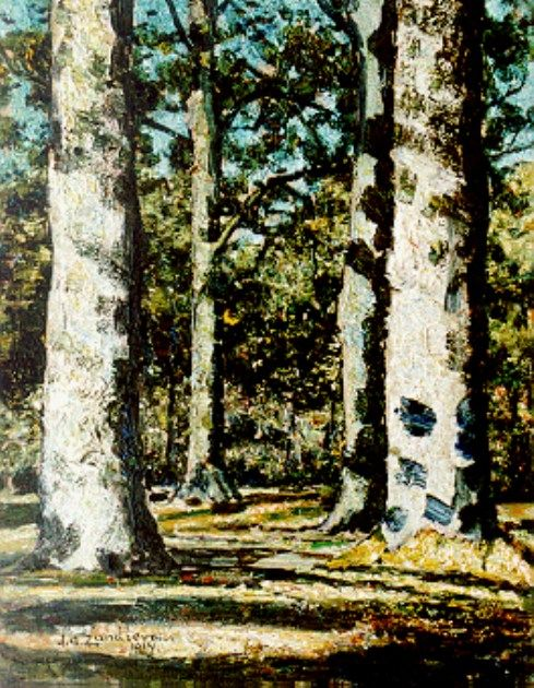 Sunlit Forest View | Jan Zandleven | Oil Painting