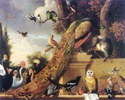 Bird Concert | Melchior d'Hondecoeter | Oil Painting