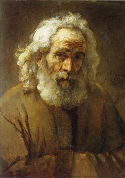 Study of an Old Man with a Beard   Rembrandt van Rijn   Oil Painting