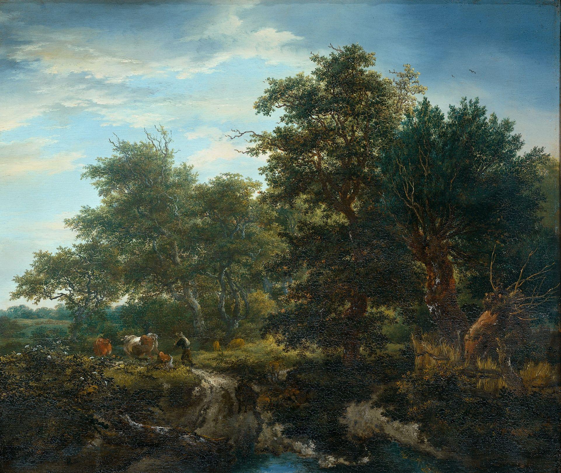Forest Scene | Jacob van Ruisdael | Oil Painting
