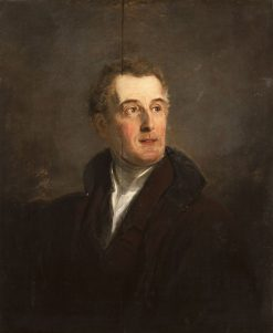 Portrait of the Duke of Wellington (1769-1852) | Jan Willem Pieneman | Oil Painting