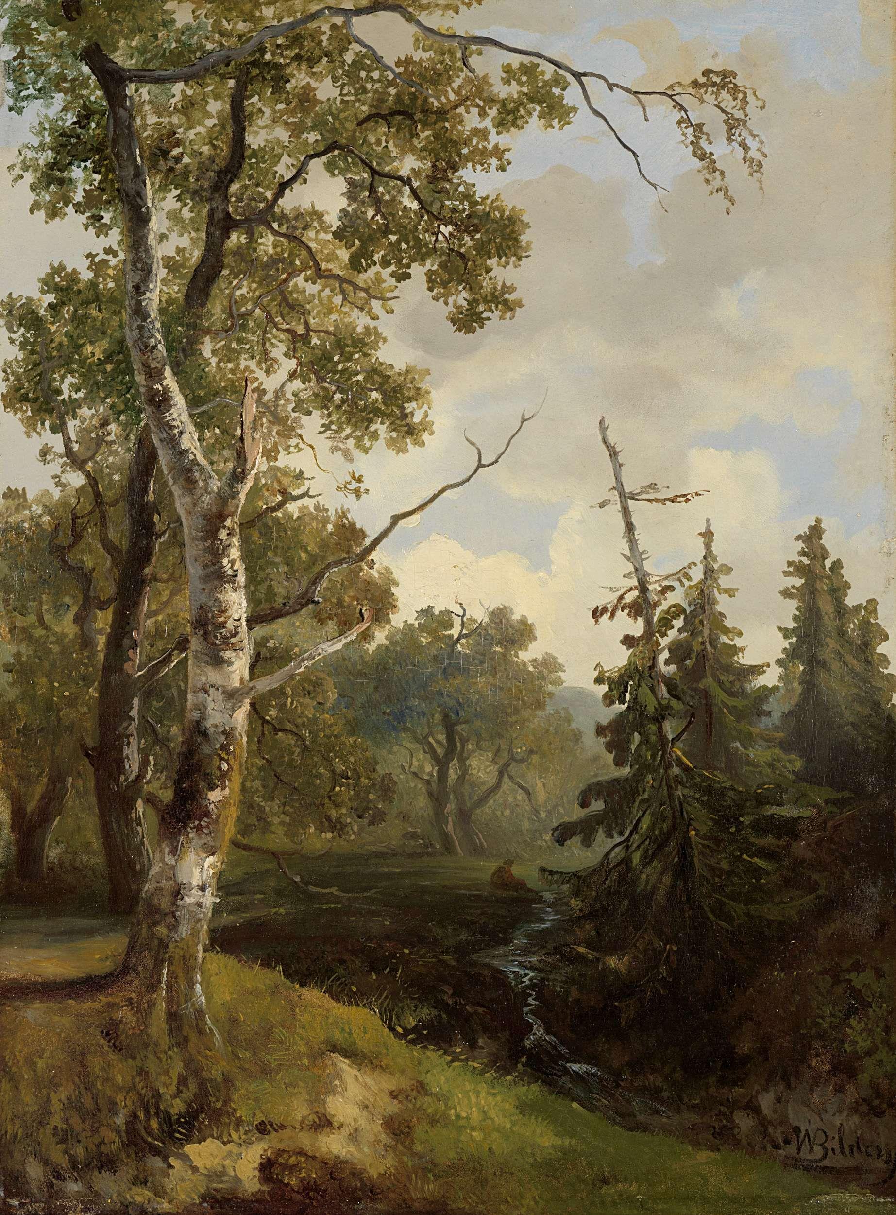 Woodland at Wolfheze(also known as Bosgezicht bij Wolfheze) | Johannes Warnardus Bilders | Oil Painting