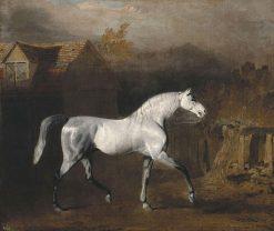 Lop | Benjamin Marshall | Oil Painting