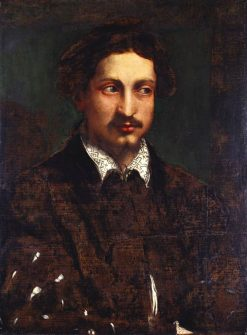 Portrait of a Young Man with a Cleft Chin | Niccolò dell' Abbate | Oil Painting