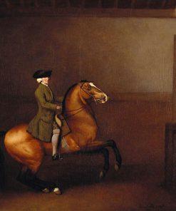 Portrait of a Gentleman | George Stubbs | Oil Painting