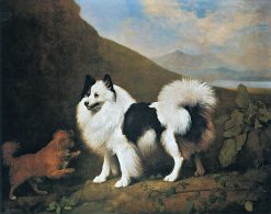 Fino and Tiny | George Stubbs | Oil Painting