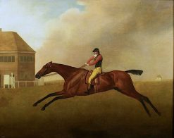 Baronet' with Samuel Chifney up | George Stubbs | Oil Painting