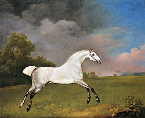 A Grey Horse Galloping in a Field | George Stubbs | Oil Painting