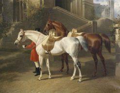 Tajar and Hammon | John Frederick Herring
