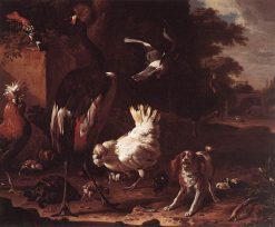 Birds and a Spaniel in a Garden | Melchior d'Hondecoeter | Oil Painting