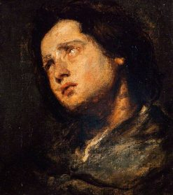 Study of a Head | Anthony van Dyck | Oil Painting