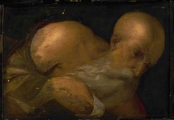 Portrait of a Man | Il Garofalo | Oil Painting