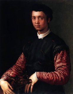 Portrait of a Young Man | Francesco Salviati | Oil Painting