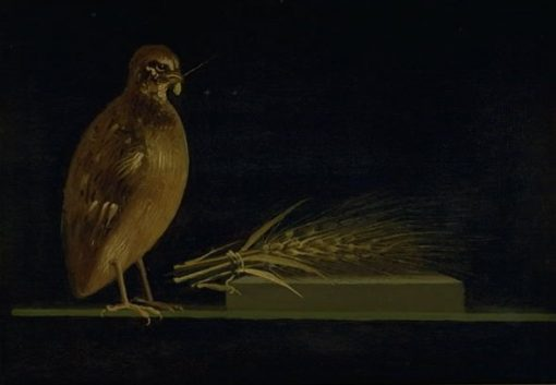 A Quail Eating an Ear of Corn | Christen Købke | Oil Painting