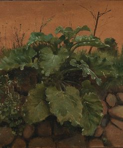 A Burdock and other Plants on a Stone Wall | Johan Thomas Lundbye | Oil Painting