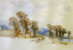 A Study of Trees | James Duffield Harding | Oil Painting