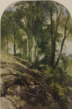 Leigh Woods | William James Muller | Oil Painting