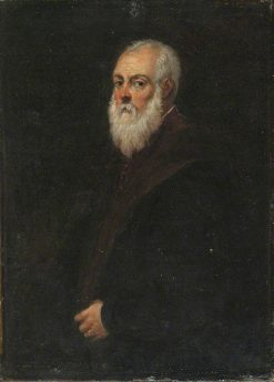 Portrait of a Bearded Man (after Jacopo Tintoretto) | David Teniers II | Oil Painting