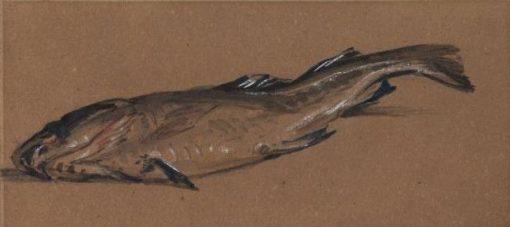 Dead Fish | William James Muller | Oil Painting