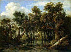 Marsh | Jacob van Ruisdael | Oil Painting