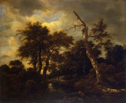 Rivulet in a Forest | Jacob van Ruisdael | Oil Painting
