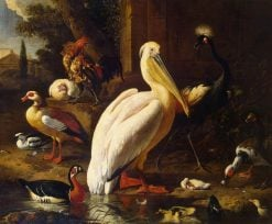 Birds in a Park | Melchior d'Hondecoeter | Oil Painting