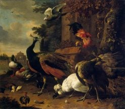 Exotic Birds in a Park | Melchior d'Hondecoeter | Oil Painting