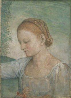 Head of a Girl   Bernardino Luini   Oil Painting