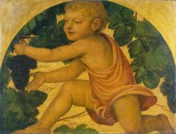 Putto Picking Grapes | Bernardino Luini | Oil Painting