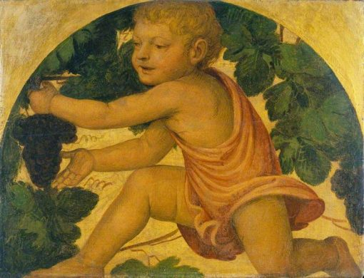 Putto Picking Grapes | Bernardino Luini | Oil Painting