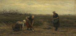 Potato Digging | Philip Lodewijk Jacob Frederik SadEe | Oil Painting