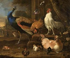 Poultry | Melchior d'Hondecoeter | Oil Painting