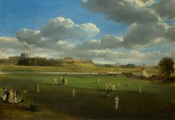 Cricket Match at Edenside