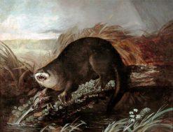 Otter Caught in a Trap   John James Audubon   Oil Painting