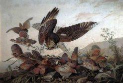 Hawk Attacking Partridges   John James Audubon   Oil Painting