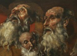 Three Studies of the Head of an Old Man | Domenichino | Oil Painting